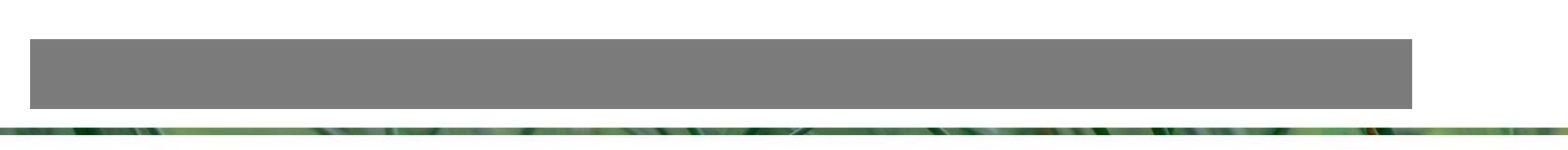 BERTKOK.com Logo